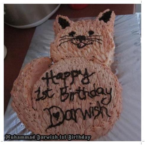 Cat Shaped Cake Darwish S 1st Baking Abode